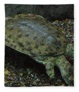Pig-nosed Turtle Fleece Blanket