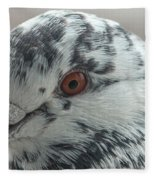 Pigeon Close-up Fleece Blanket
