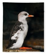 Pigeon Guillemot Juvenile Fleece Blanket