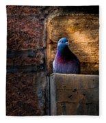 Pigeon Of The City Fleece Blanket