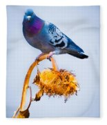Pigeon On Sunflower Fleece Blanket