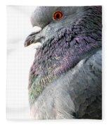 Pigeon Portrait Fleece Blanket