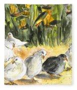 Pigeons In Benidorm Fleece Blanket