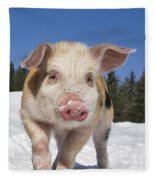 Piglet Walking In The Snow Fleece Blanket