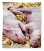 Piglets Fleece Blanket