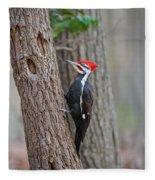 Pileated Woodpecker Foraging Fleece Blanket