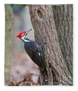 Pileated Woodpecker On Tree Fleece Blanket