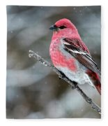 Pine Grosbeak  Pinicola Enucleator Fleece Blanket