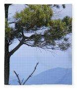 Pine Tree Along The Blue Ridge Parkway Fleece Blanket
