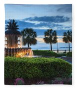 Pineapple Fountain Charleston South Carolina Sc Fleece Blanket