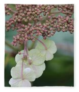 Pink And Green Hydrangea Closeup Fleece Blanket