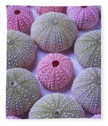 Pink And Green Urchins Fleece Blanket