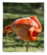 Pink And Orange Ball Fleece Blanket