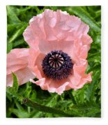 Pink And Purple Poppy Fleece Blanket