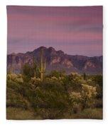 Pink And Purple Skies  Fleece Blanket