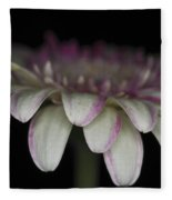 Pink And White Gerbera 3 Fleece Blanket