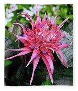 Pink Bromeliad Fleece Blanket