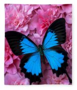 Pink Camilla And Blue Butterfly Fleece Blanket