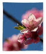 Pink Cherry Tree Blossom Fleece Blanket