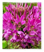 Pink Cleome Flower Fleece Blanket