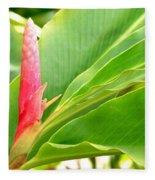 Pink Cone Ginger Bud Fleece Blanket