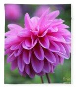 Pink Dahlia Closeup Fleece Blanket