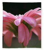 Pink Daisy 1 Fleece Blanket