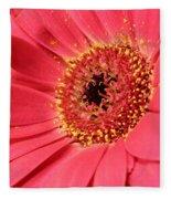 Pink Daisy Fleece Blanket