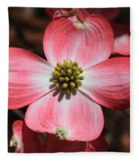 Pink Dogwood At Easter 5 Fleece Blanket