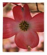 Crown Of Thorns Pink Dogwood At Easter 8 Fleece Blanket