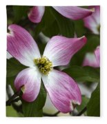 Pink Dogwood Blossom Up Close Fleece Blanket