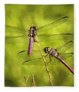 Pink Dragonflies Fleece Blanket