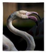 Pink Flamingo  Fleece Blanket