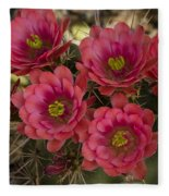 Pink Hedgehog Cactus Flowers  Fleece Blanket