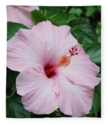 Pink Hibiscus #3 Fleece Blanket