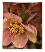 Pink Lenten Rose Fleece Blanket