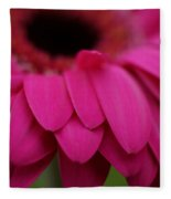 Pink Petals Fleece Blanket