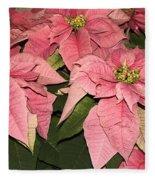 Pink Poinsettias Close-up Fleece Blanket