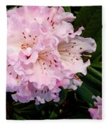 Pink Rhodies Fleece Blanket