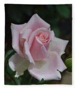Pink Rosebud Fleece Blanket