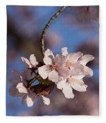 Pink Spring - Sunlit Blossoms And Blue Sky - Vertical Fleece Blanket