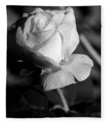 Pink Tea Rose 01 - Infrared Fleece Blanket