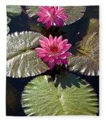 Pink Water Lily IIi Fleece Blanket