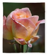 Pink Yellow Rose 01 Fleece Blanket