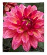 Pink Zinnia Flower Fleece Blanket