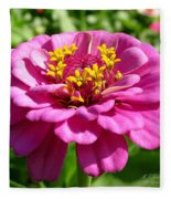 Pink Zinnia Fleece Blanket