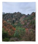 Pinnacles National Park Fleece Blanket