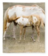 Pinto Mare And Filly Fleece Blanket