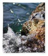 Piper 3 Fleece Blanket