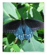 Pipevine Swallowtail Fleece Blanket